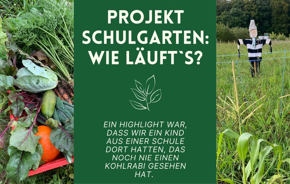 Interview Teil 2: Der Veggie Specials Schulgarten  - Interview: Der Veggie Specials Schulgarten